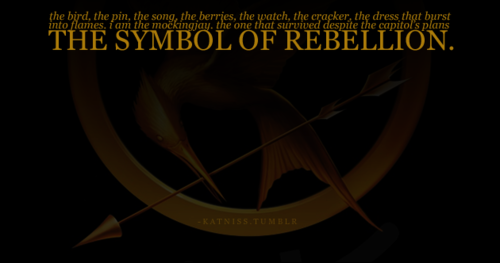 rebellion in hunger games Themes in catching fire by suzanne collins are interdependence, loyalty, government control, and rebellion these themes are similar to the hunger games, the first book in the series.